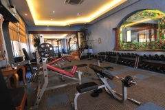 gym-house-and-lot-for-sale-in-mckinley-hill-village-fort-bonifacio-global-city-bgc-taguig