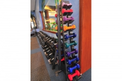 gym-2-house-and-lot-for-sale-in-mckinley-hill-village-fort-bonifacio-global-city-bgc-taguig