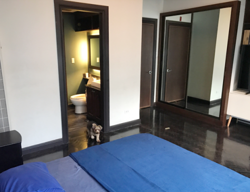 Modern Interior Design and Newly Renovated Three Bedrooms 3BR Unit For Sale in Regency Salcedo Village Makati with Overlooking Salcedo Park